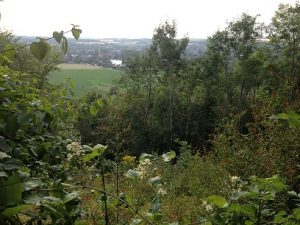 View to Marlow from Quarry Wood